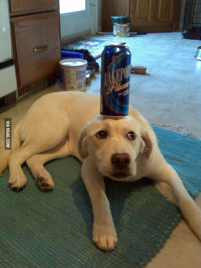Balancing a beer can with a priceless face