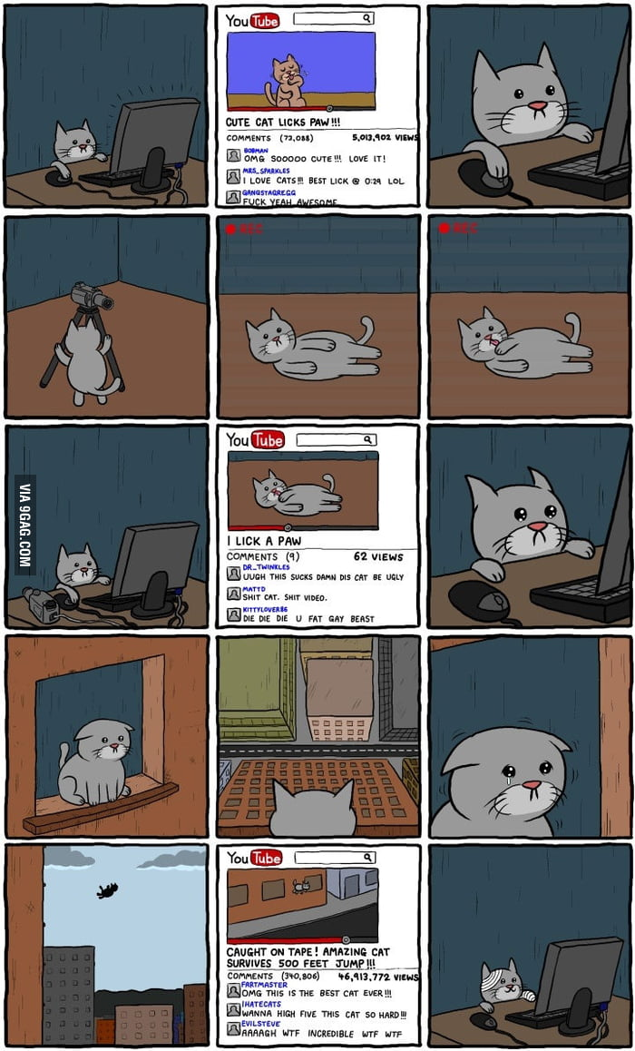 A cat trying to get famous on the internet