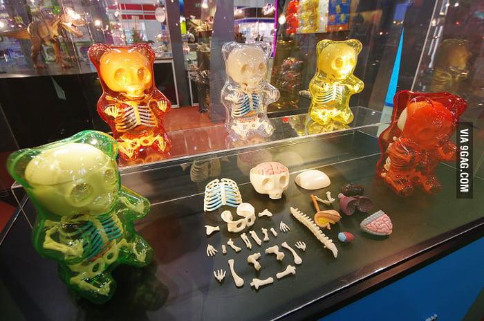 Gummi Bear Anatomy Toys