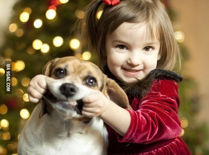 Doggy, smile!