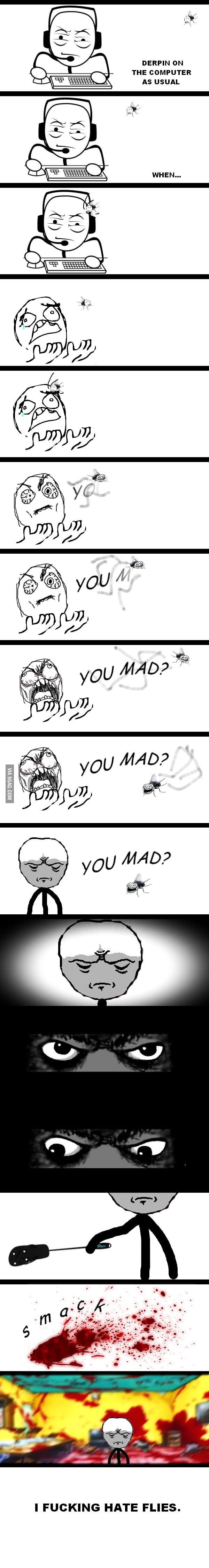 I hate flies