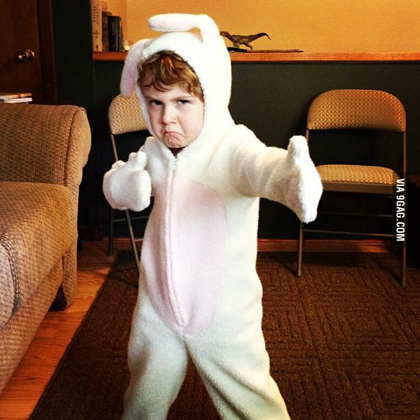 Karate Bunny