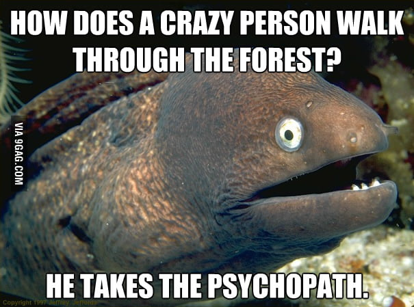 How does a crazy person walk through the forest?
