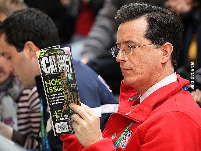 Stephen Colbert reading Cat Fancy