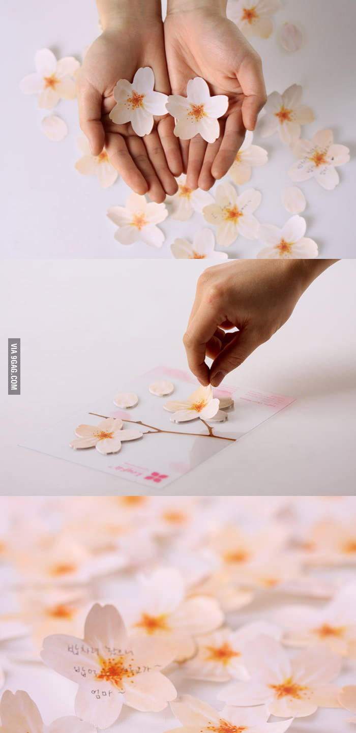 Cherry Blossom Memo Stickers