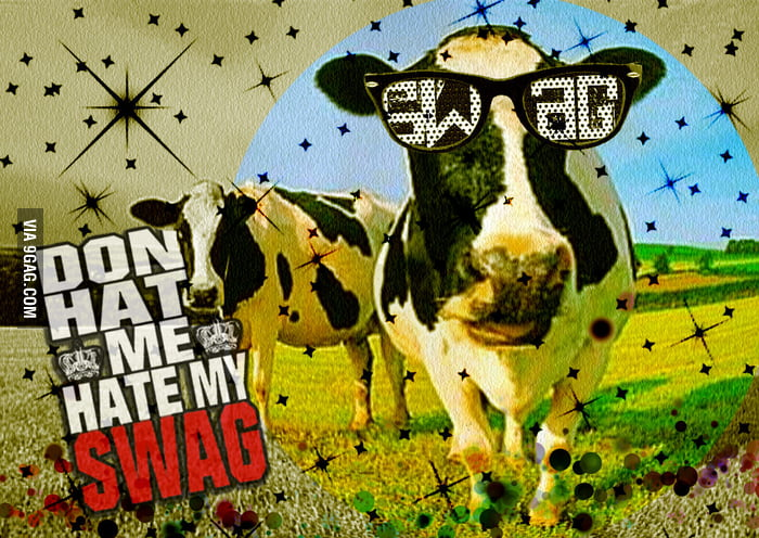 Cow with SWAG