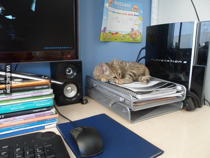 Computer Desk for Gaming