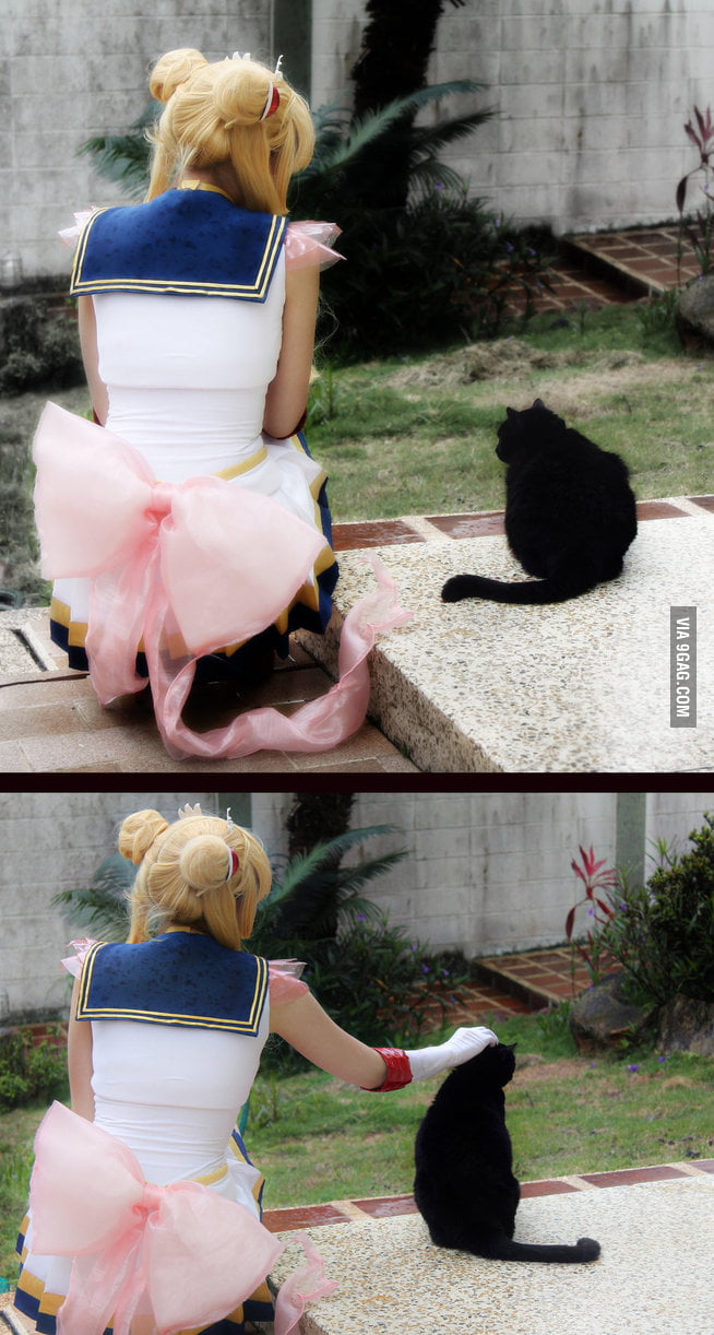 Super Sailor Moon and Luna Cosplay - Friendship