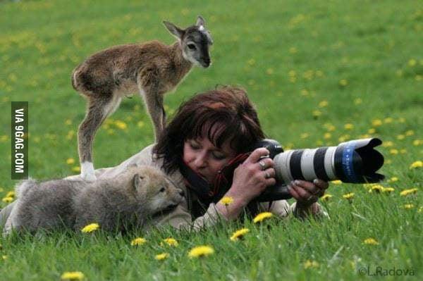 Assistant Photographers
