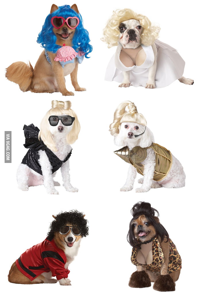 Do you recognize these famous people dog costumes?