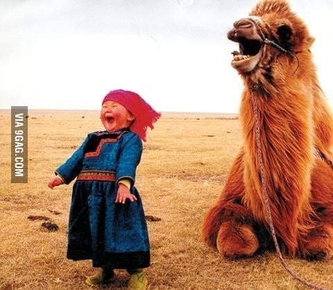 The happiest picture on the internet?