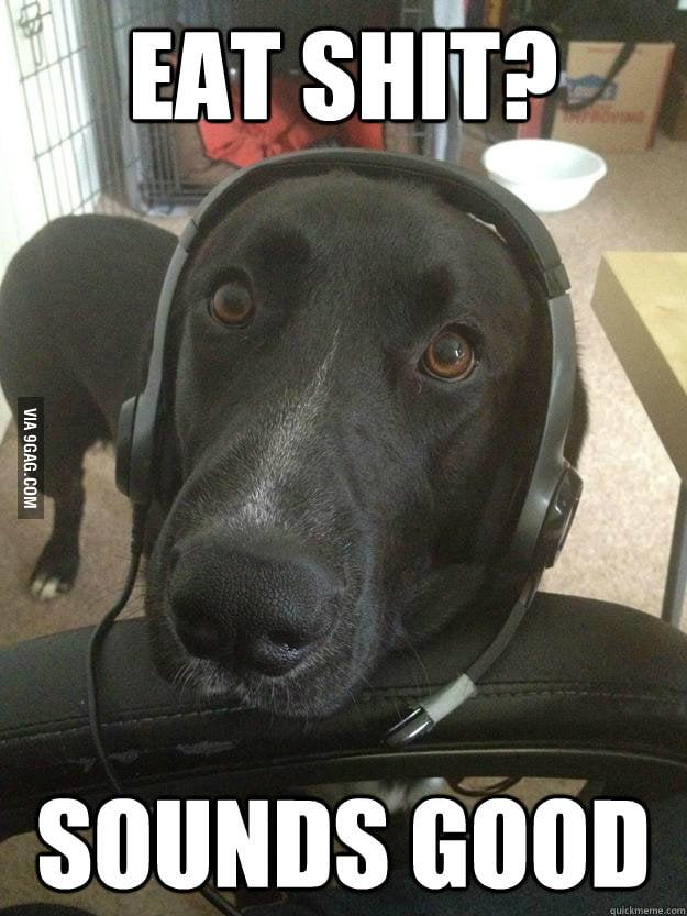 Gamer Dog brb