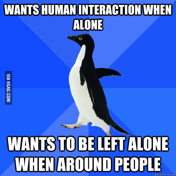 The Introvert's Perspective