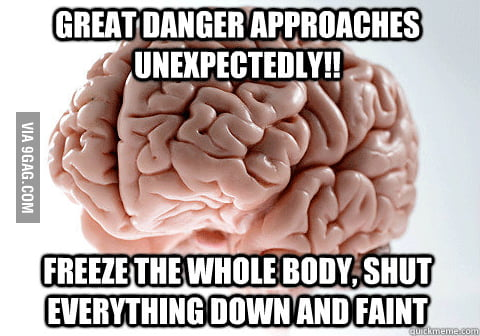 Scumbag brain at its best