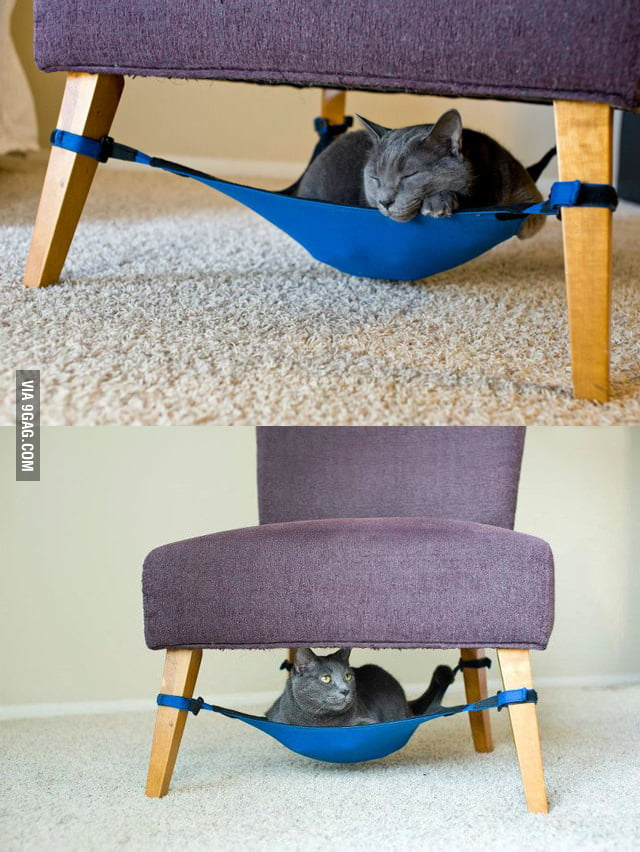 Cat Crib: Space Saving Cat Bed