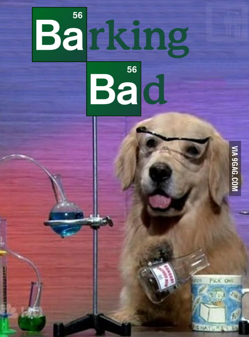 Barking Bad