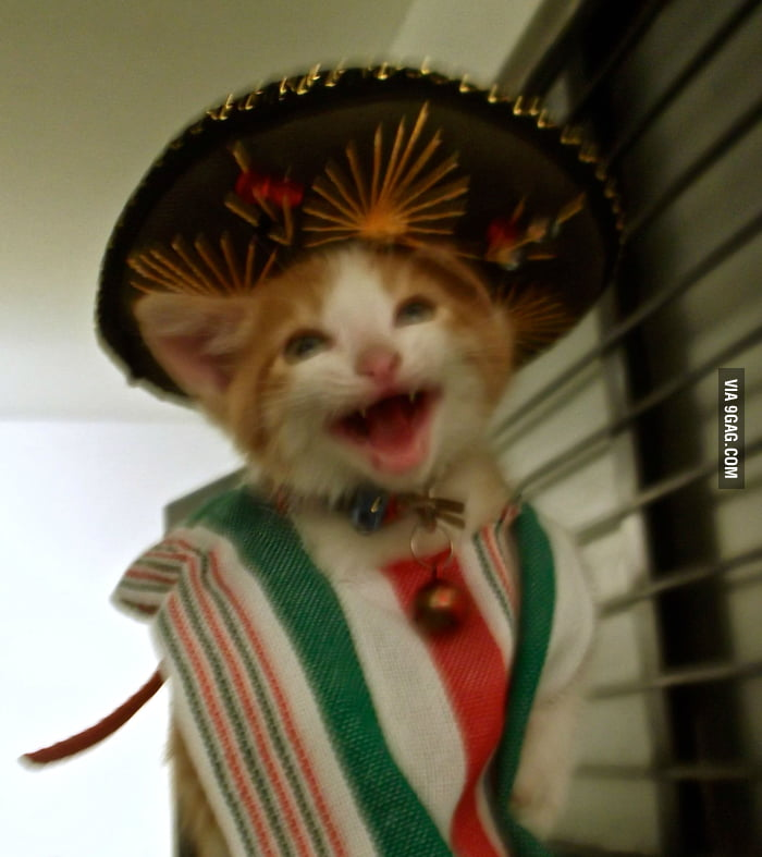 Yesterday was Mexico's Independence Day!