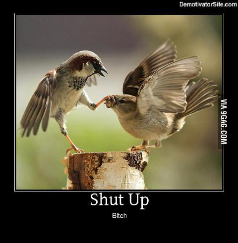 Shut Up!! b*tch