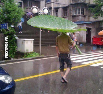 Bcuz an umbrella is too mainstream!