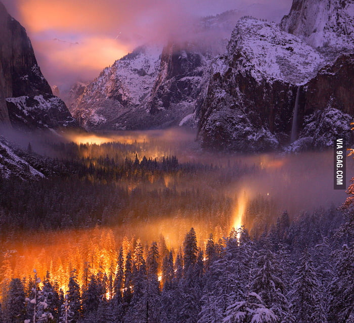 Yosemite Valley mist illuminated by car headlights at nightf