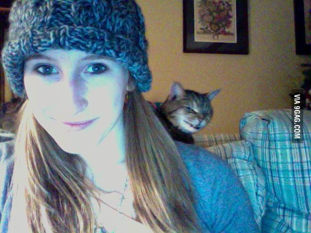 Evil Cat Photobomb