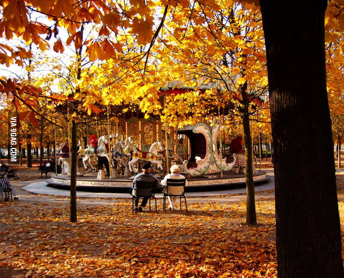 When Fall comes to Paris.