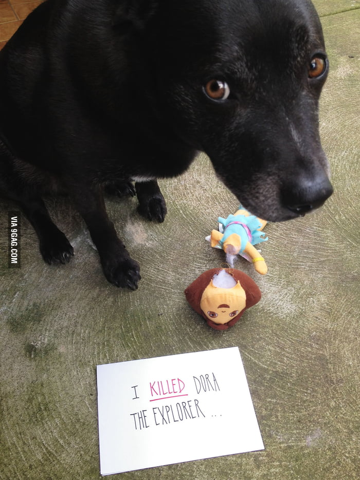 Killer dog!
