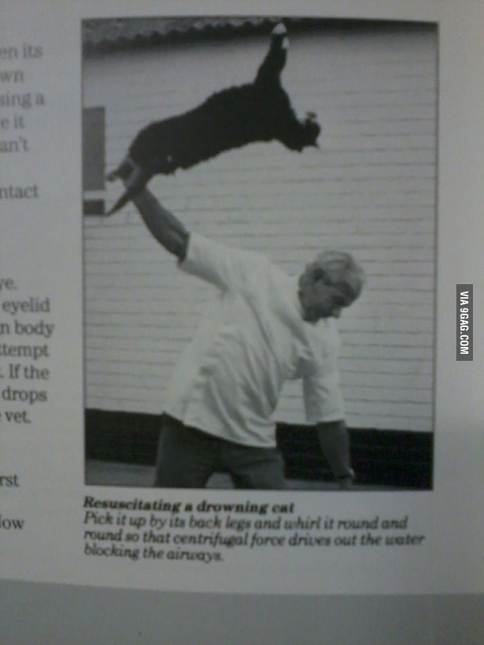 Resuscitating a drowned cat according to a vet book