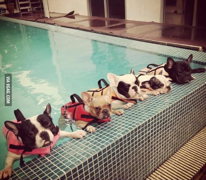 Learning To Swim!