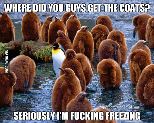 It's certainly freezing!