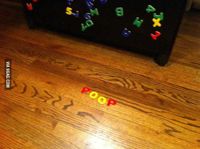 My little girl said there was poop on the floor...