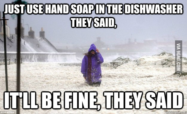 Just use hand soap in the dishwasher they said...
