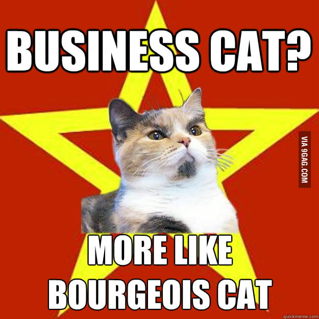 Lenin cat is not happy with business cat.