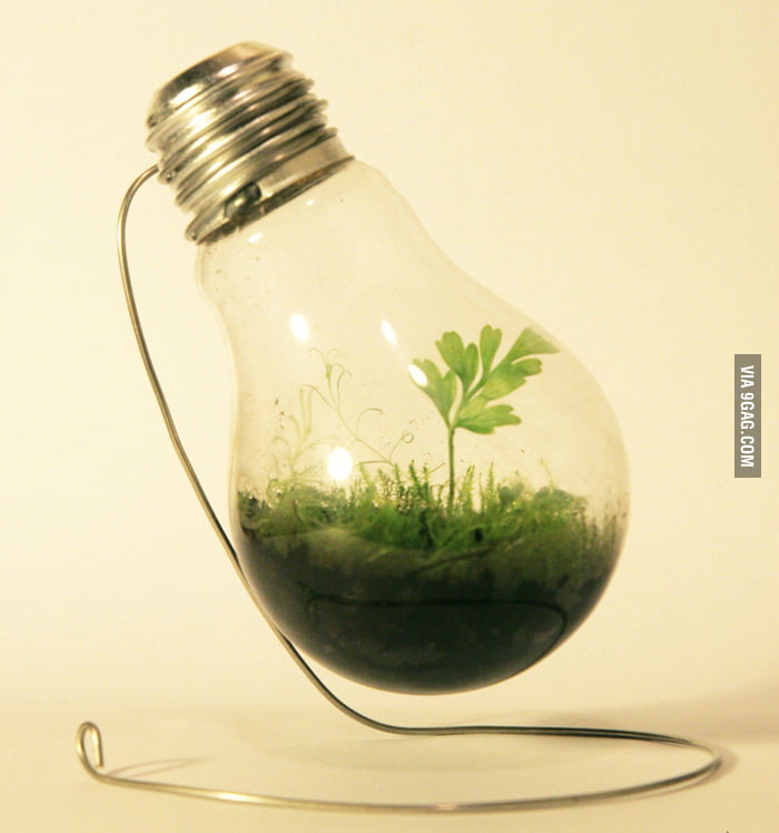 How to reuse an old light bulb