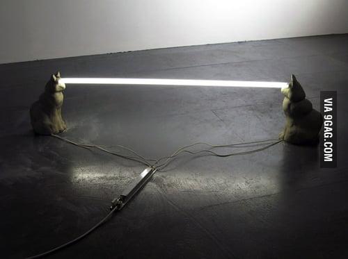 Laser cats!