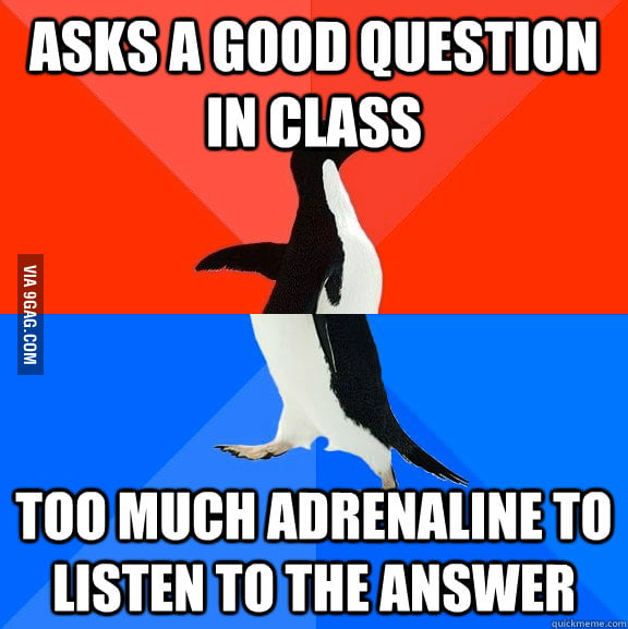 And I really needed to know the answer