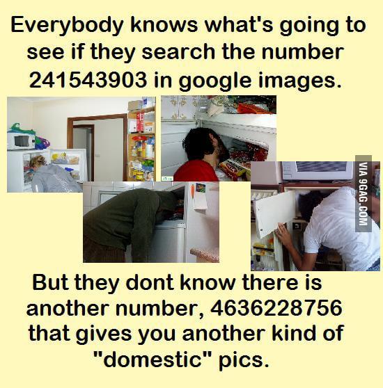 241543903 vs 4636228756   9gag