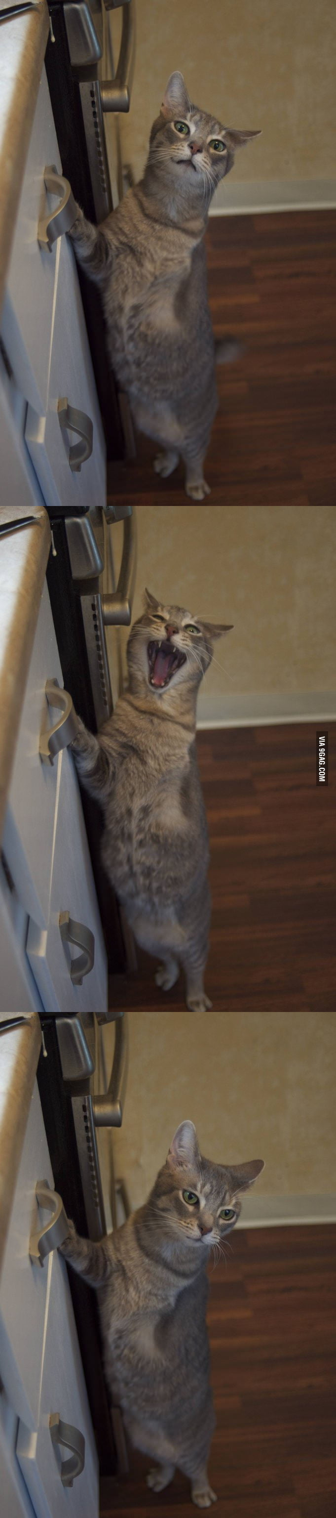 """Open the drawer!"""