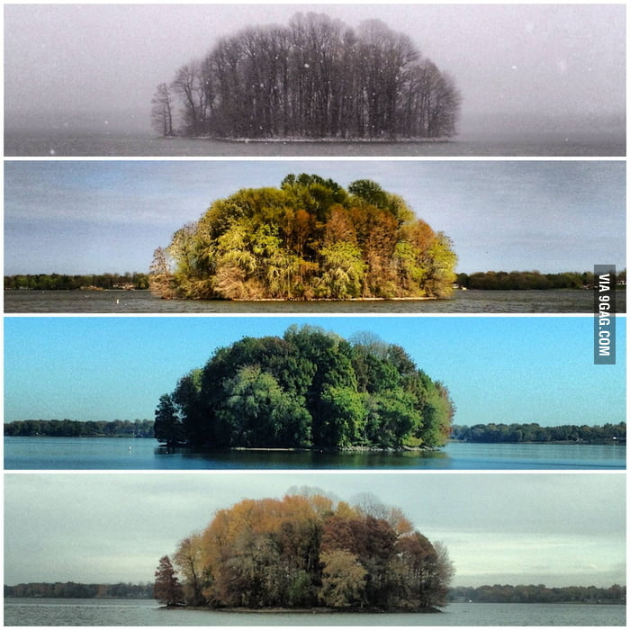 The Four Seasons of the Bush