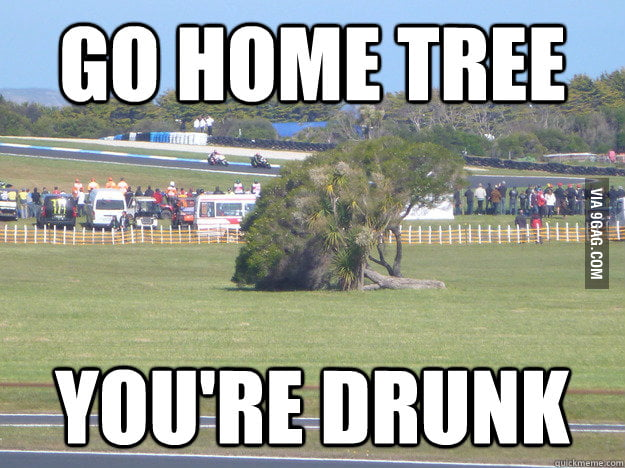 Go home, Tree. You're drunk.