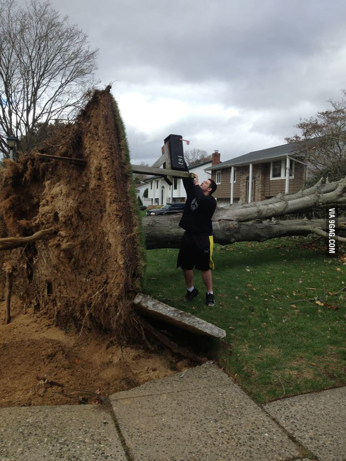 Checking mailbox after Hurricane Sandy