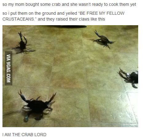 I am the crab lord!