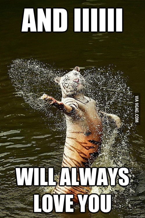 Romantic Water Tiger