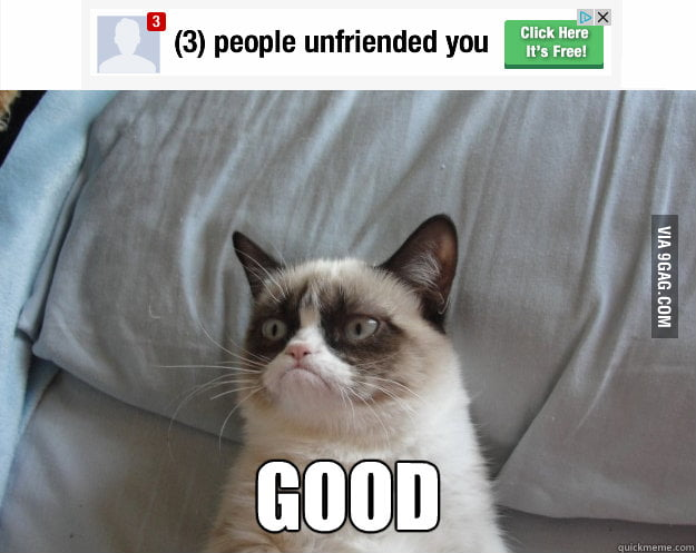 Grumpy Cat on being unfriended.