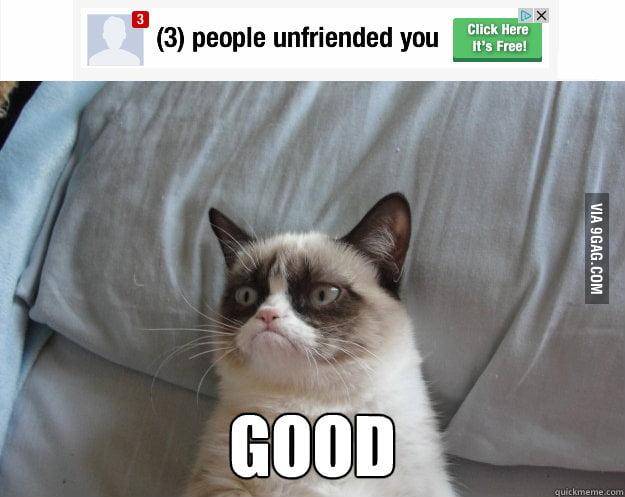 Grumpy Cat on being unfriended.