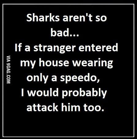 Sharks aren't that bad...