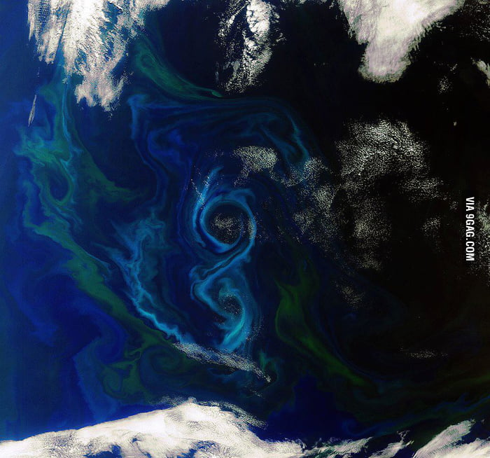 View of a phytoplankton bloom in the ocean, seen from space