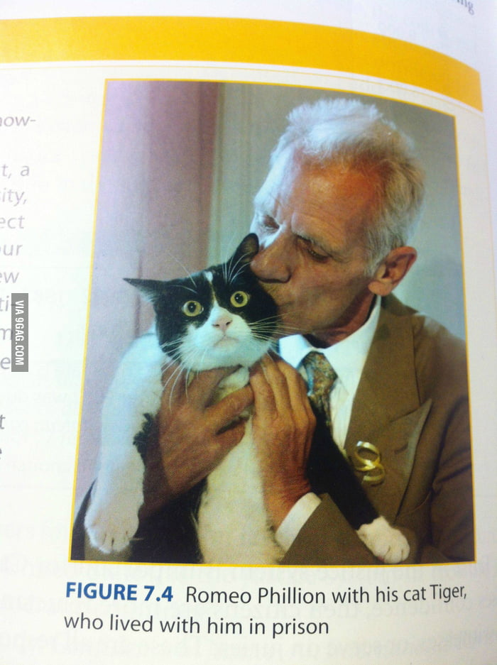 Found this in my textbook. The cat must have seen things.