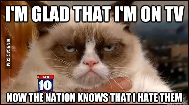 Grumpy Cat doesn't mind the media exposure.