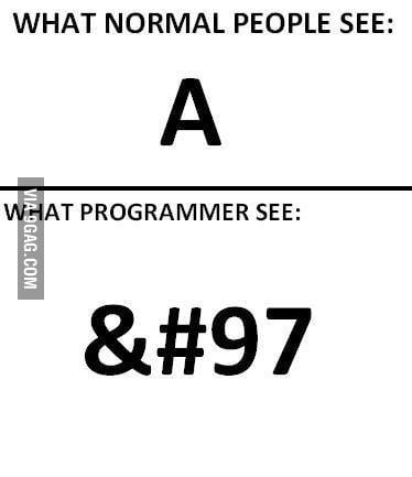 Me & a Programmer ..